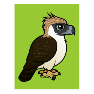 Philippine Eagle Postcard