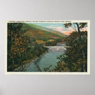 Phoencia, Bridge over Esopus Poster