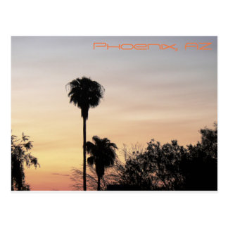 Phoenix Sunset Postcard