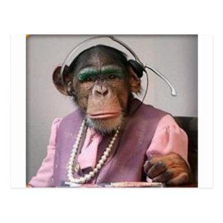phone monkey postcard