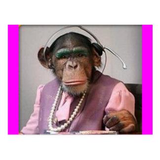 phone monkey postcards