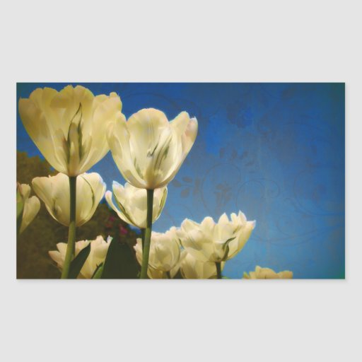 Photo blanche de tulipes avec le motif floral de r autocollants en rectangle