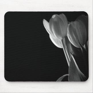 Photo blanche de tulipes sur l'arrière - plan noir tapis de souris
