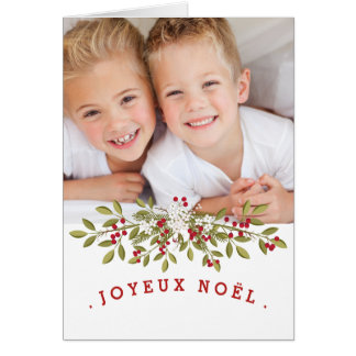 Photo chart of the Merry Christmas Card