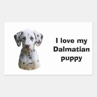Photo dalmatienne de chiot stickers rectangulaires