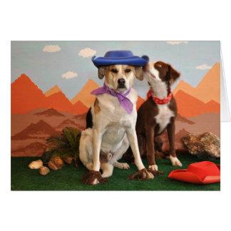 photo de 2 chiens affectueux avec des chapeaux de carte de vœux