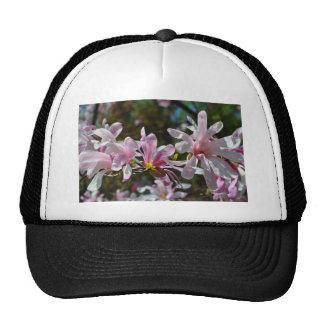 Photo de fleur casquettes