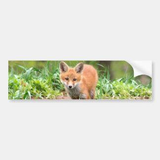Photo de kit adorable de renard rouge autocollant de voiture