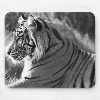 Photo de profil de tigre de B&W Tapis De Souris