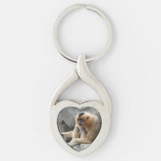 Photo du gibbon orange et noir détendant sur la porte-clé argenté cœur torsadé