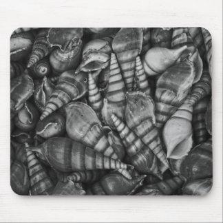 Photo en spirale noire et blanche de coquillages tapis de souris