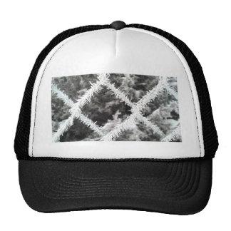 Photo givrée casquettes