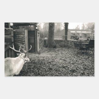 Photo noire et blanche de renne et de traîneau autocollants