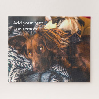 Photo of 2 cute brown dogs relaxing on a blanket, jigsaw puzzle