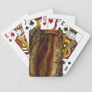 Photo of a hollow in a tree playing cards