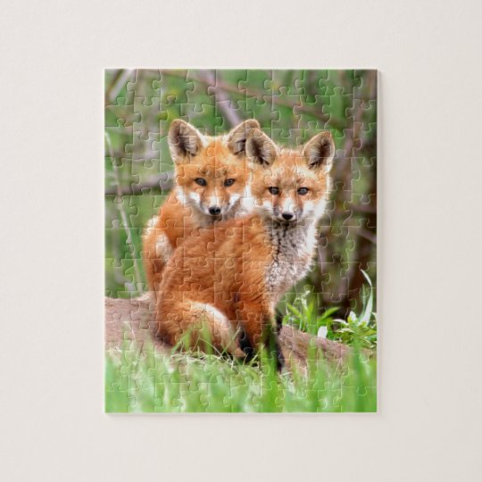 Photo of adorable red fox kits sitting together jigsaw puzzle