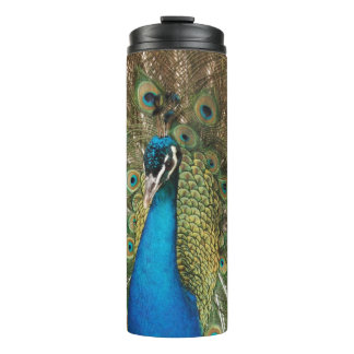 Photo of Beautiful Peacock with Spread Feathers Thermal Tumbler