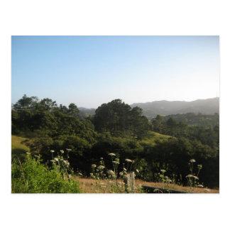 Photo of beautiful scenery, on a postcard. postcard