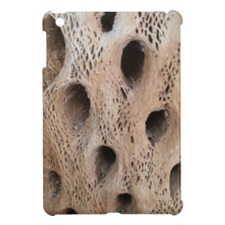Photo of Cholla Skeleton iPad Mini Cover