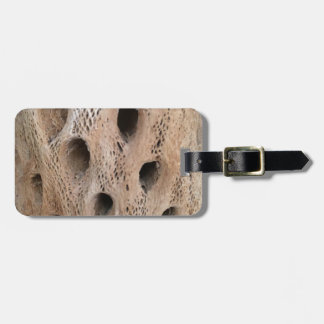 Photo of Cholla Skeleton Luggage Tag