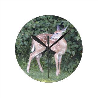 Photo of cute baby deer wallclocks