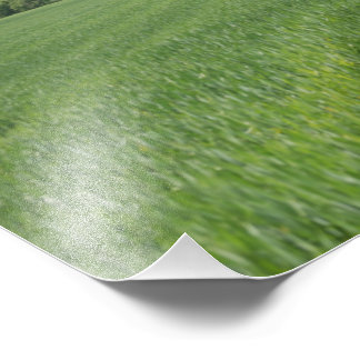 Photo of Green Fields