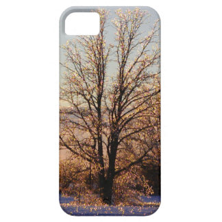 Photo of ice-covered tree iPhone 5 cover