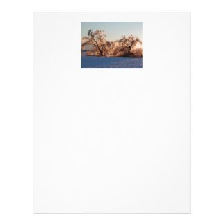 photo of ice-covered trees personalized letterhead