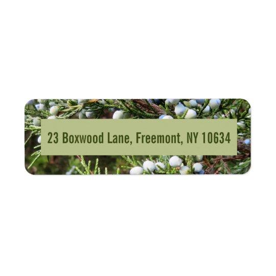Photo of juniper bush with return address return address label
