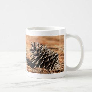 Photo of pine seed on red winter needles basic white mug