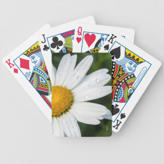 photo playing card, a margueritte, make green bicycle playing cards