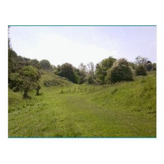 Photo Postcard 18 Grassy Valley Track