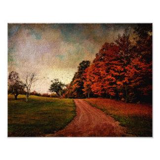 Photo Print-Mere Color