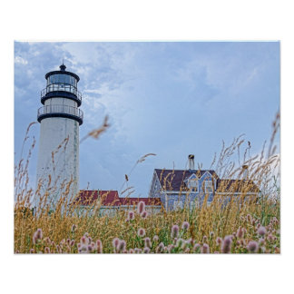 photo print of the Cape Cod Light House