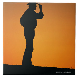 Photo, silhouette of a cowboy with his hand on ceramic tiles