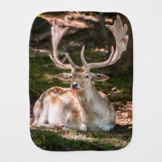 photo stag under wood burp cloth