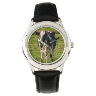 Photo watch of cow