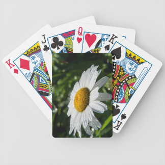 photograph a margueritte, drop of water, make bicycle playing cards