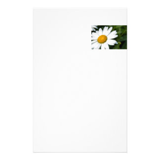photograph, a margueritte, make green stationery