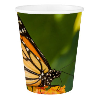 photograph of a butterfly on a flower paper cup