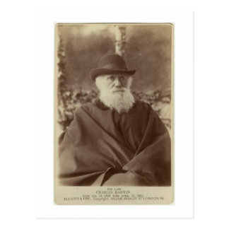 Photograph of Charles Darwin, 29 November 1881 Postcard