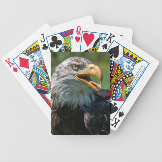 photograph of eagle bicycle playing cards