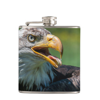 photograph of eagle hip flask