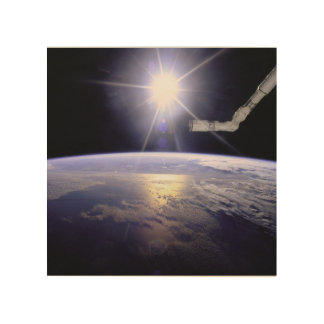 Photograph of Remote Manipulator System (RMS) Wood Prints