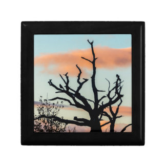 Photograph silhouette tree in the sunset trinket boxes