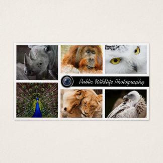 Photographe de photographie de faune cartes de visite
