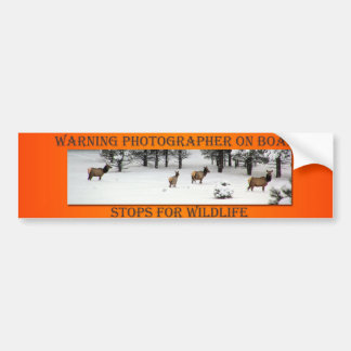 Photographer On Board Elk Orange Bumper Sticker