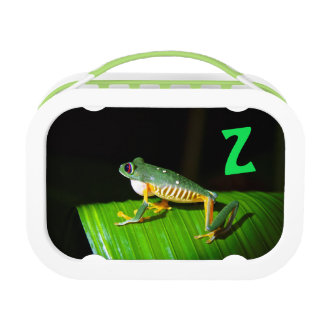 Photographic Red-Eyed Tree Frog Kids Lunchbox Z