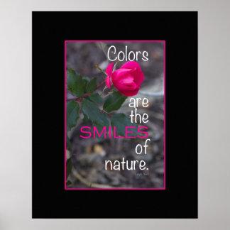 Photographie de recourbement simple de rose de poster