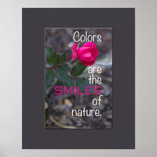 Photographie de recourbement simple de rose de ros posters